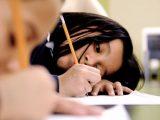 Special School District Essay